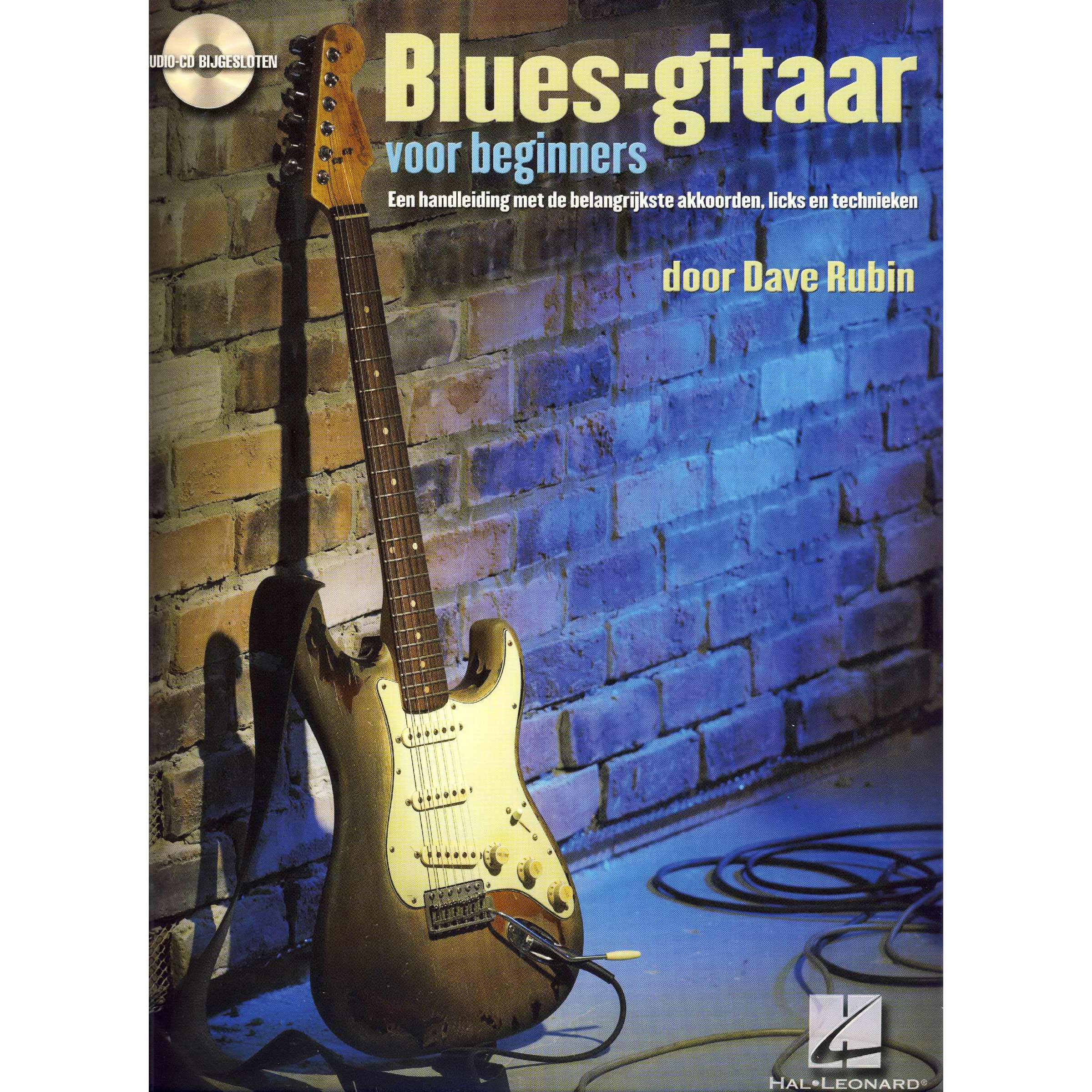 Bluesgitaar Voor Beginners - Dave Rubin