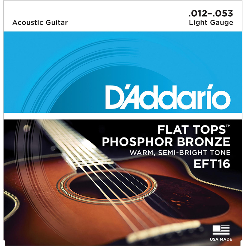 D'Addario EFT16 Flatwound Acoustic Guitar Strings
