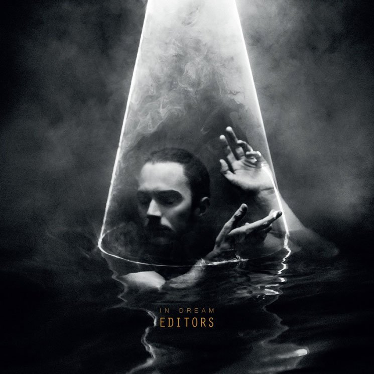 Editors - In Dream (Gold Vinyl)
