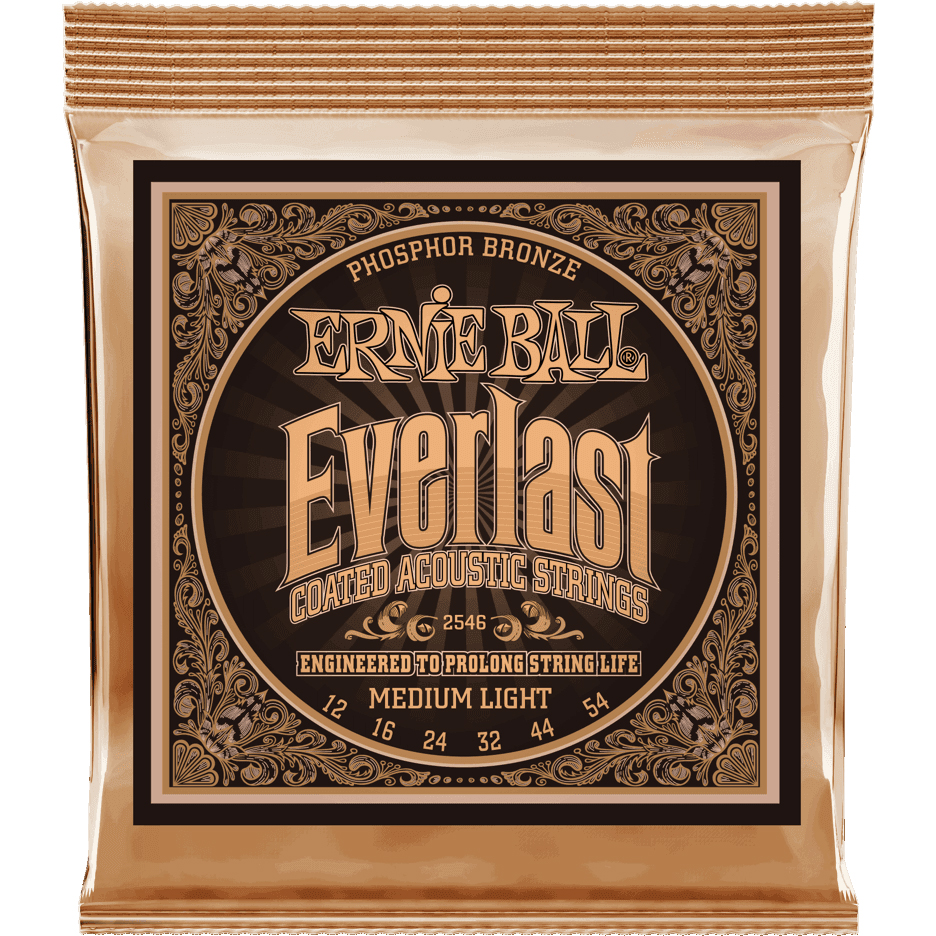 Ernie Ball 2546 Everlast Coated Phosphor Bronze 12-54