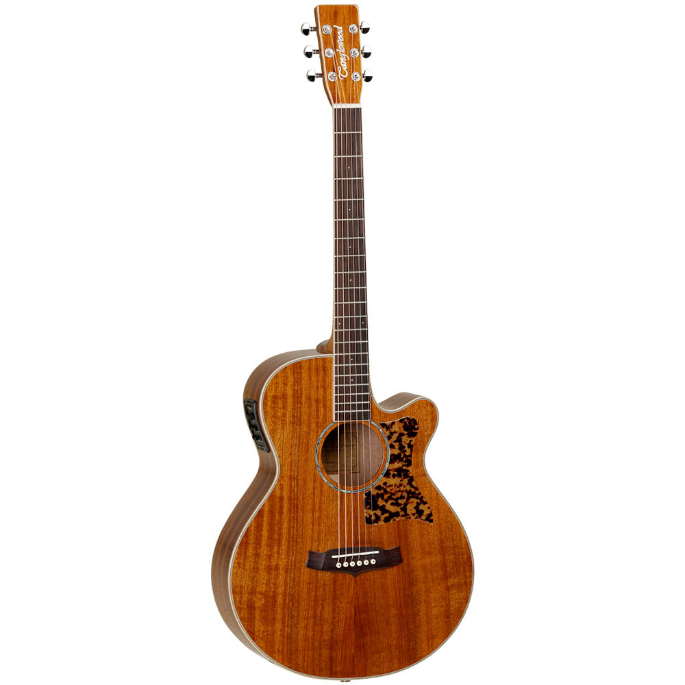 Tanglewood TW47 ASE Sundance Performance Acoustic Guitar